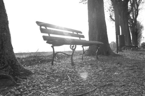 Il silenzio della Solitudine