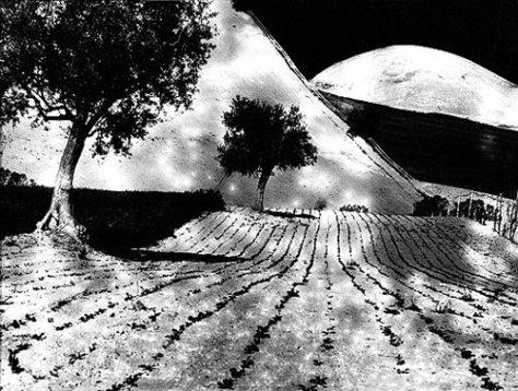 Mario Giacomelli, Paesaggio