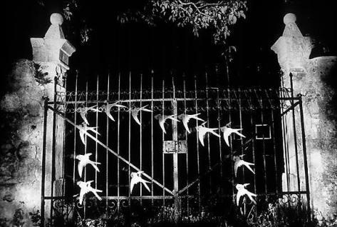 evgen-bavcar-gate-with-swallows
